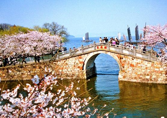 南京、无锡、苏州、杭州、周庄乌镇单动六日游(夕阳