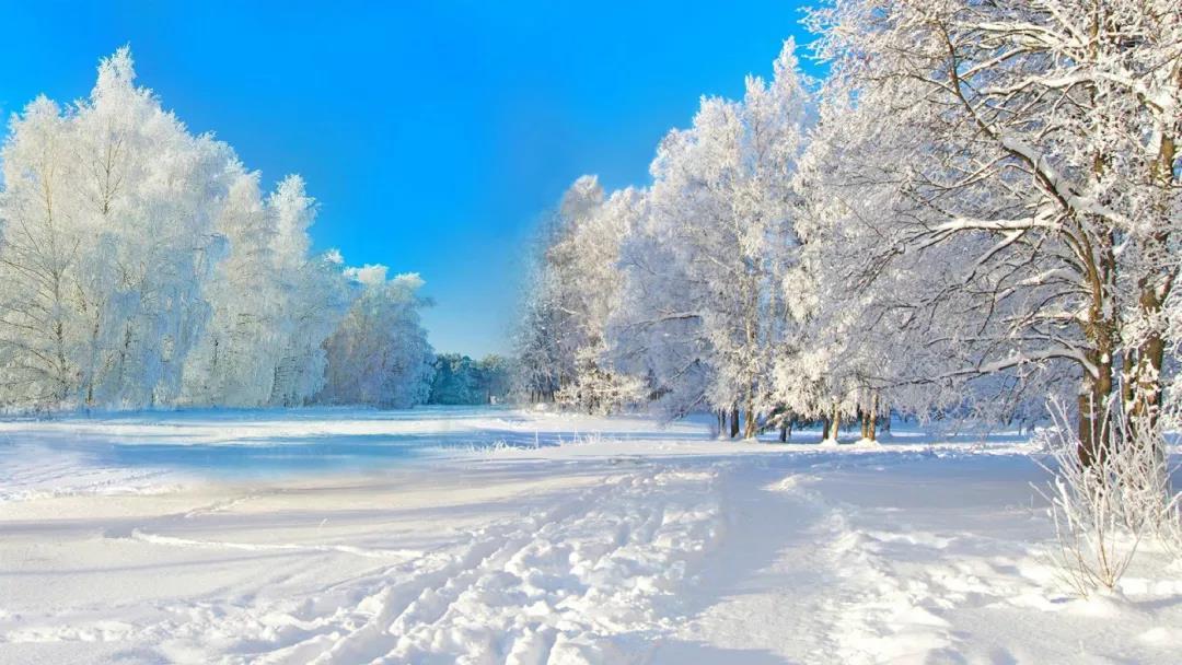 安阳到哈尔滨、亚布力、童话雪乡、米莉亚之家双卧7